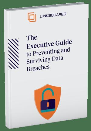 ebook-executive-guide